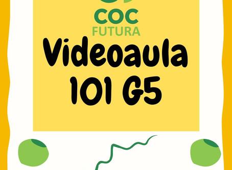 Videoaula 101 G5 Educação Infantil