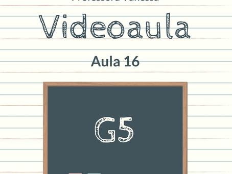 Videoaula 16 G5 Educação Infantil