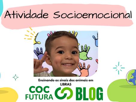 Ensinando os sinais dos animais em LIBRAS Socioemocional Educação Infantil