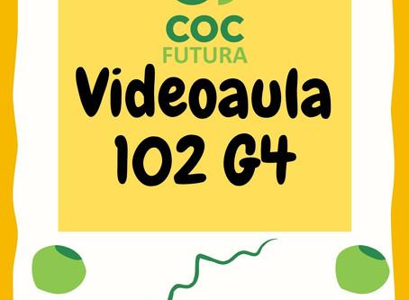 Videoaula 102 G4 Educação Infantil