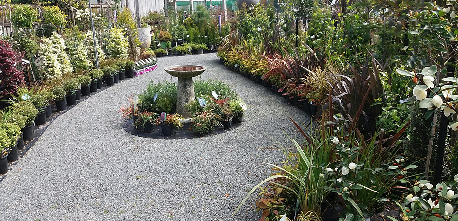 Formal Garden area.jpg