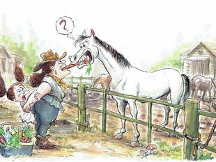 Tata, Libi and the horse