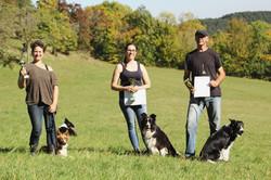 fci herding instinct test