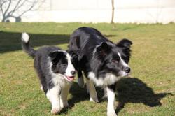 Joyce & Lucy