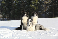 Taking a winter group picture :)