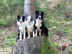 Lucy, Joyce and Frosty