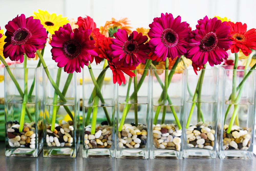 Gerbera daisies cocktail centerpieces.jpg