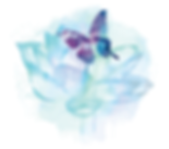 butterfly-flower-logo.png