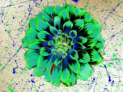 Trippy Flower Power