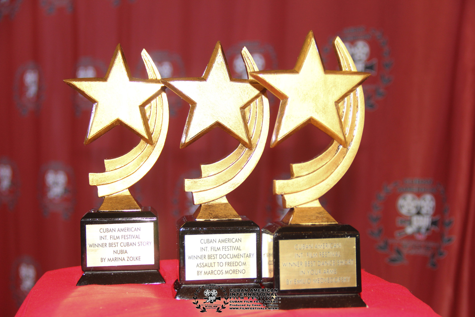 CUBAN FILM FEST - CESAR NUNEZ-42.jpg