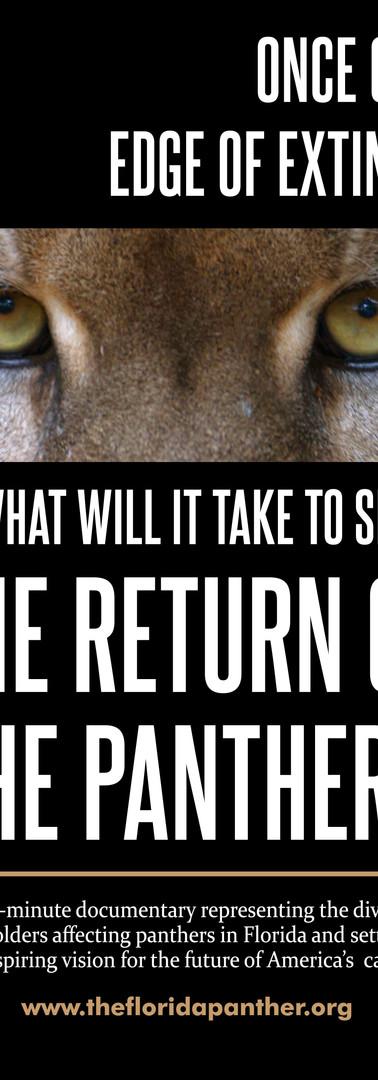 Rerturn of Panther Movie Poster.jpg