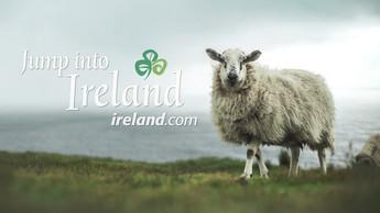 jump into ireland.jpg