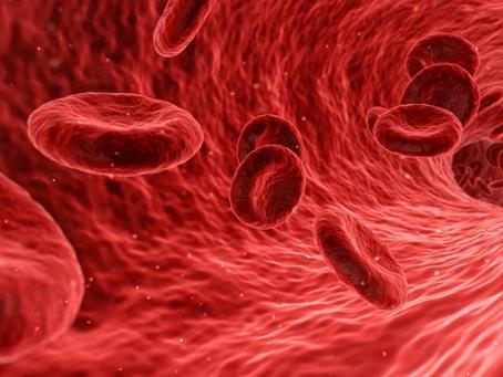 Choque hemorrágico y control del daño: fisiopatología (1/2)