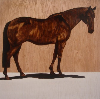 Horse 289