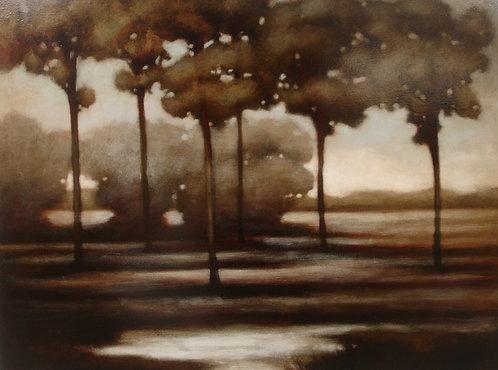 Landscape 707