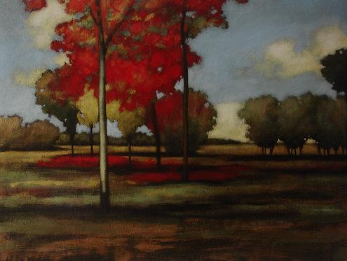 Landscape 659