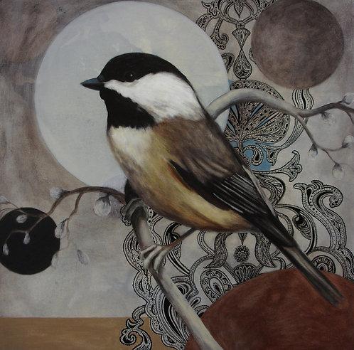 Bird 65