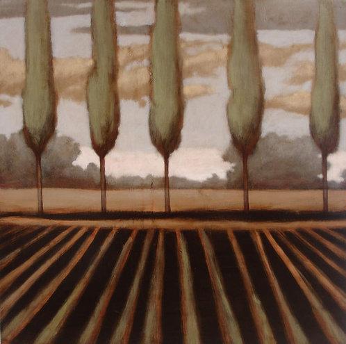 Landscape 633