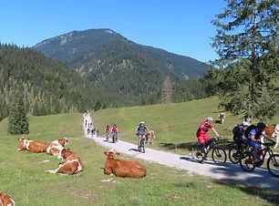 geführte Mtb Touren am Tegernsee MTB Guiding Tegernsee Radtouren am Tegernsee