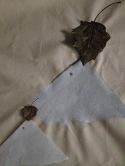 Leaf and paper