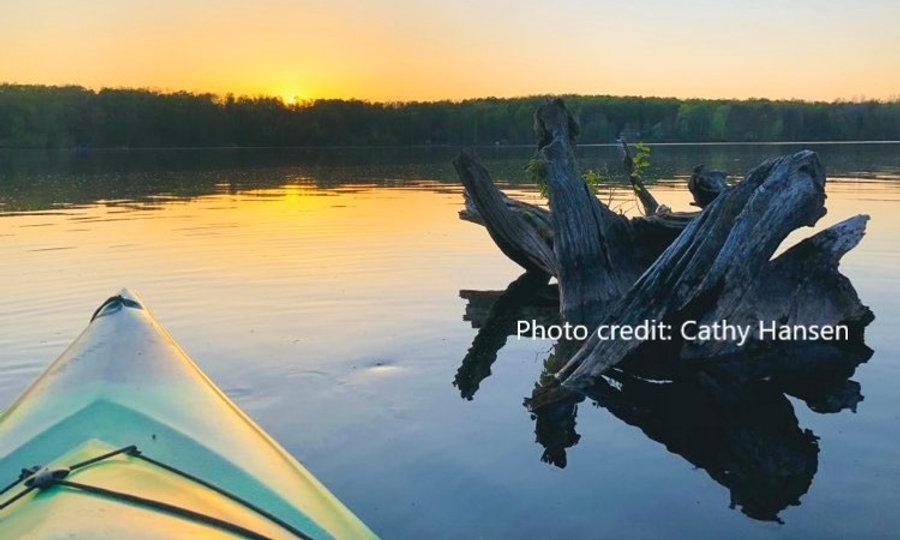 Driftwood and Canoe.jpg