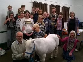 A little visit from Teddy the Pony