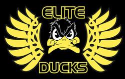 Elite Ducks