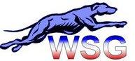 Winston Salem Grayhounds