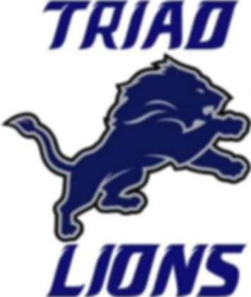 Triad%20LIons_edited.jpg