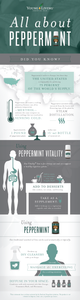 All-about-peppermint-infographic-01-1.png