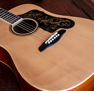 Acoustic Guitars.png