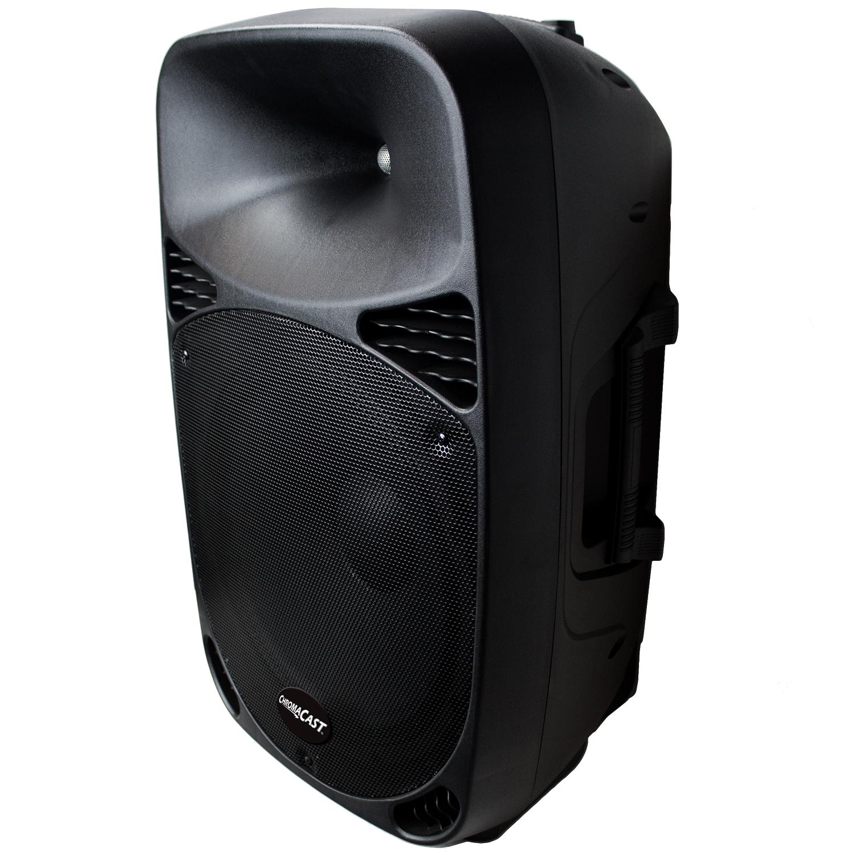 """ChromaCast Portable 15"""" Speaker"""