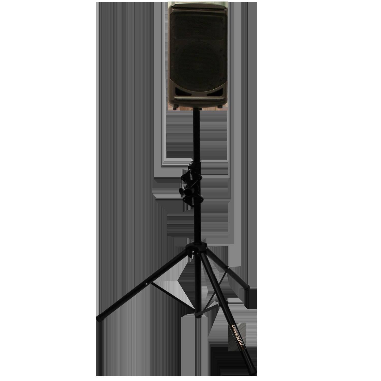 Speaker Stand with Speaker