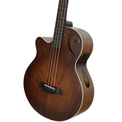Left-Handed Fretless Acoustic-Electric Bass