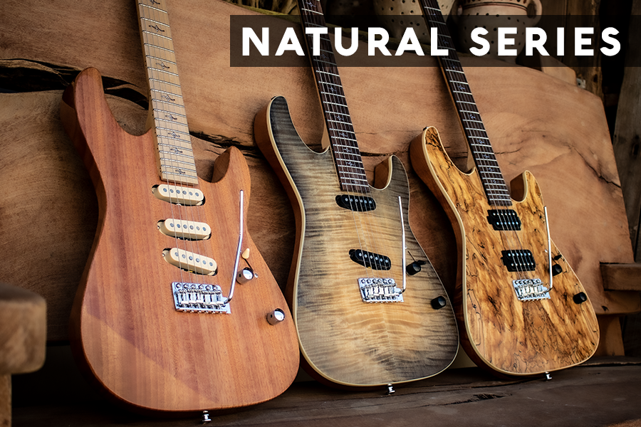 Natural Series Collection Banner copy.png