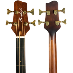 Fretless Acoustic-Electric Bass