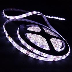 White Light Strip