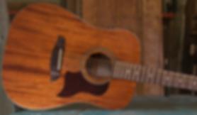 new-mahogany-12-string.png