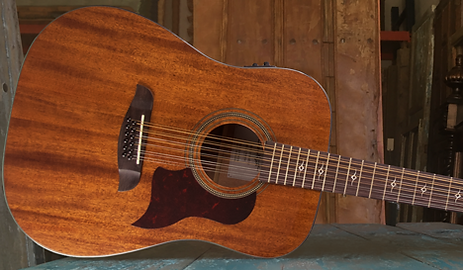 new-mahogany-12-string.png