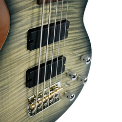 Trans Black 5-String Americana Heritage