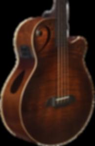 ST-AB24EC-FMS-fretless-side-tuner.png