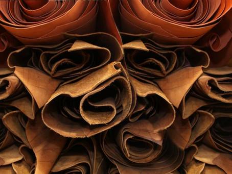 Le cuir, mais qu'est ce que c'est ? 😳
