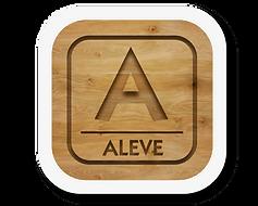 Icono web Aleve_4x-8.png