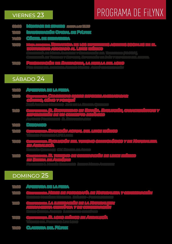 Web FiLynx Programa 21n.png