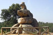PN-Descanso-Jabali-Junta.png