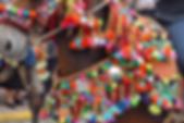 Albaldoneria mulos andujar artesania