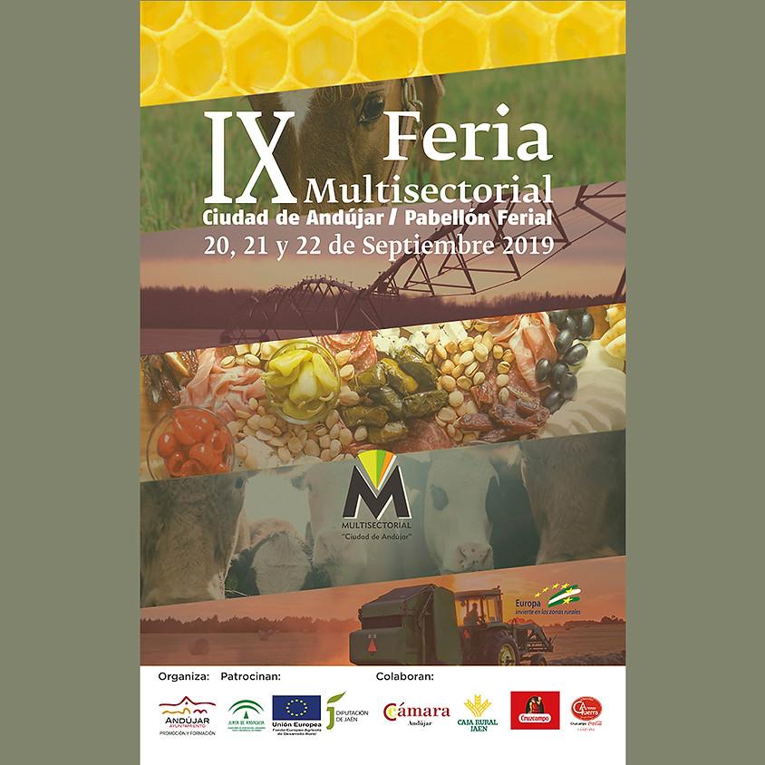 IX Feria Multisectorial