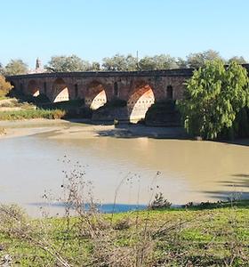 ArqC-Puente-JMRey.png