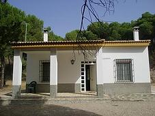EL alamillo.png