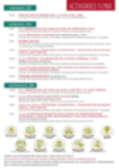 Web FiLynx Actividades.png